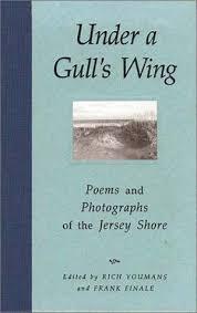 gullswing